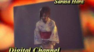Sarasa Hara DIGITAL CHANNEL
