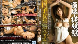 DDT-530 Collapse, Rope Slave Returnees Young Lady Yuri Momose
