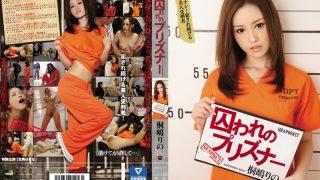Censored IPZ 779  Rino Kirishima Haruna Ikoma