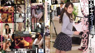 RBD-788 Sakuragi Rin Censored