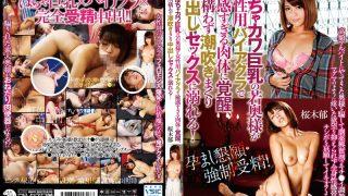 SMA-817 Sakuragi Iku Censored