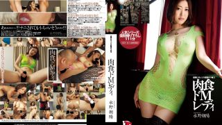 LID-037 Mizuno Asahi, Jav Censored
