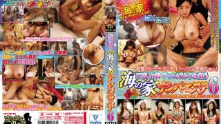 CLUB-330 Jav Censored