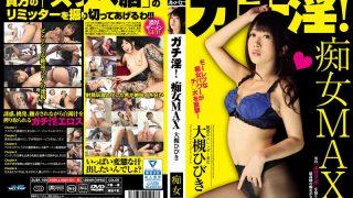 DJSK-105 Ootsuki Hibiki, Jav Censored
