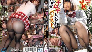HARU-008 Yukimoto Mei, Jav Censored