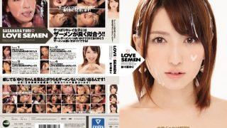 IPZ-813 Sasahara Yuri, Jav Censored