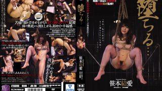 JBD-208 Sasamoto Yurara, Jav Censored
