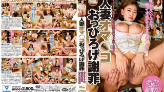 MCSR-227 Jav Censored