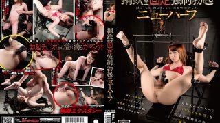 HVG-033 Rindoru Hoshikawa, Jav Censored