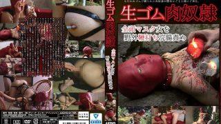 AXDVD-0170r Jav Censored
