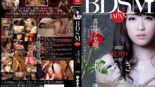 DPKA-001 Yanagi Akira, Jav Censored