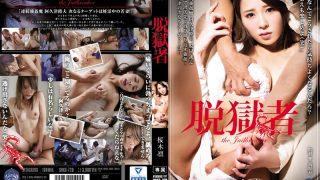 SHKD-720 Sakuragi Rin, Jav Censored