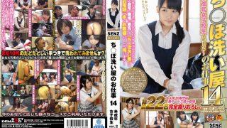 SDDE-434 Miyazaki Aya, Jav Censored