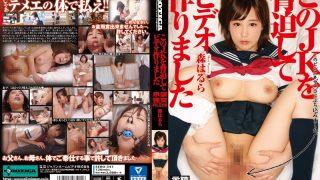 SERO-341 Mori Harura, Jav Censored