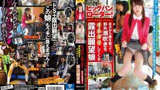 SVDVD-530 Atomi Shuri, Jav Censored