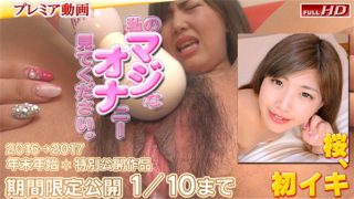 gachinco gachip344 Jav Uncensored
