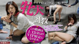 sm-miracle e0842 Jav Uncensored