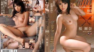tokyo-hot red 165 Jav Uncensored