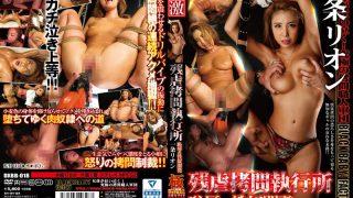 DXBB-018 Ichijou Rion, Jav Censored