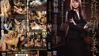 RBD-378 Nishino Shou, Jav Censored