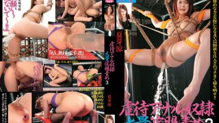 CC-136 Natsu Meryou, Jav Censored