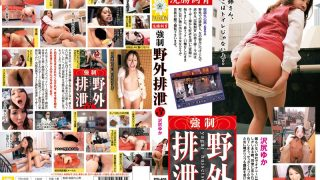 PSI-409 Sawa Shiriyuka, Jav Censored