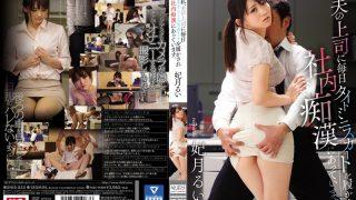 SNIS-855 Hitzuki Rui, Jav Censored