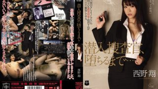 ATID-200 Nishino Shou, Jav Censored