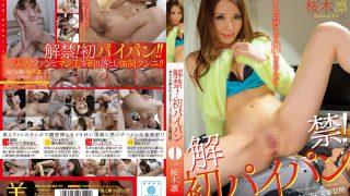 BBI-192 Sakuragi Rin, Jav Censored
