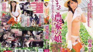 KTKX-118 Suzumori Sana, Jav Censored