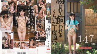 MUM-048 Hatsume Rina, Jav Censored