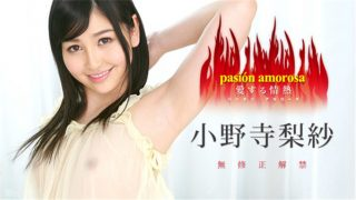 caribbeancom 030317 385 Jav Uncensored