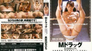DDT-137 Hasegawa Chihiro, Jav Censored