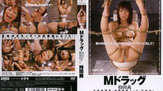 DDT-164 Mochida Akane, Jav Censored