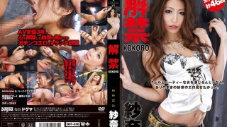 DDT-330 Sana, Jav Censored