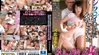 HERY-083 Kawakita Haruna, Jav Censored