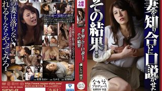 NSPS-569 Sano Aoi, Jav Censored