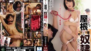 RBD-832 Kawakami Nanami, Jav Censored