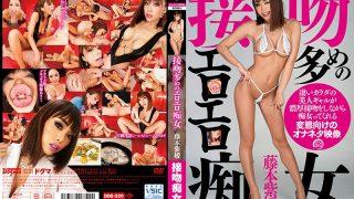 DDB-320 Fujimoto Shion, Jav Censored
