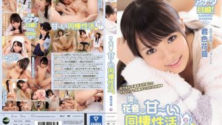 IPZ-927 Kimiiro Kanon, Jav Censored
