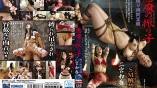 BDA-29 Ninomiya Waka, Jav Censored