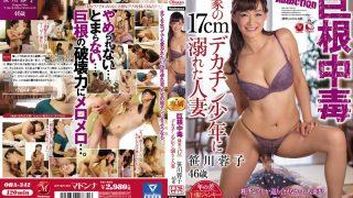 OBA-342 Sasagawa Youko, Jav Censored