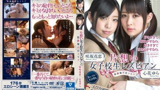 HMPD-10035 Jav Censored