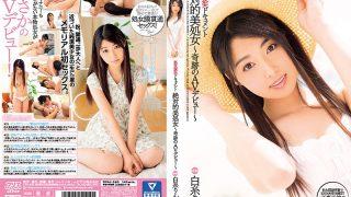 DVAJ-240 Shiraito Rin, Jav Censored