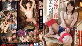 TKI-054 Hakii Haruka, Jav Censored