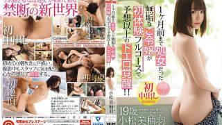 LLR-011 Komatsu Miyuha, Jav Censored