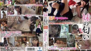 SDMU-638 Ichinose Momo, Jav Censored