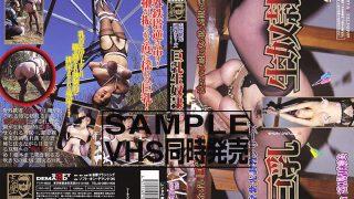 SRD-038 Miyajima Asami, Jav Censored