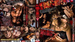 CMC-180 Hayakawa Mizuki, Jav Censored