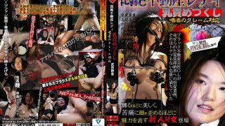 CMF-046 Takei Shizuka, Jav Censored